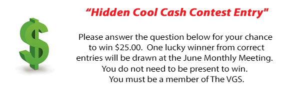 Cool Cash Contest Logo for June